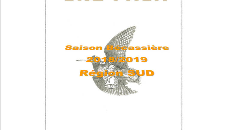 Bilan 2018/2019 de la saison bécassière en région PACA