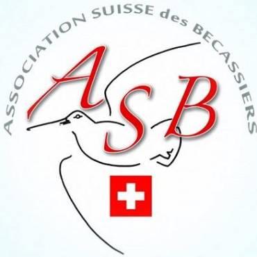 Chasse à la bécasse en Suisse