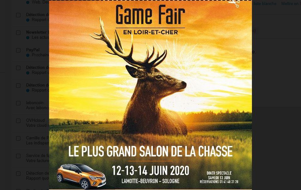 Game Fair 2020