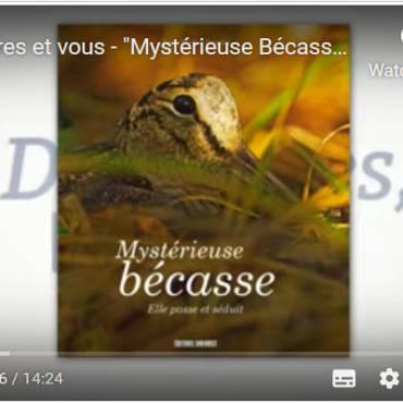 Des livres et vous – «Mystérieuse Bécasse» de Jean-Michel Desplos