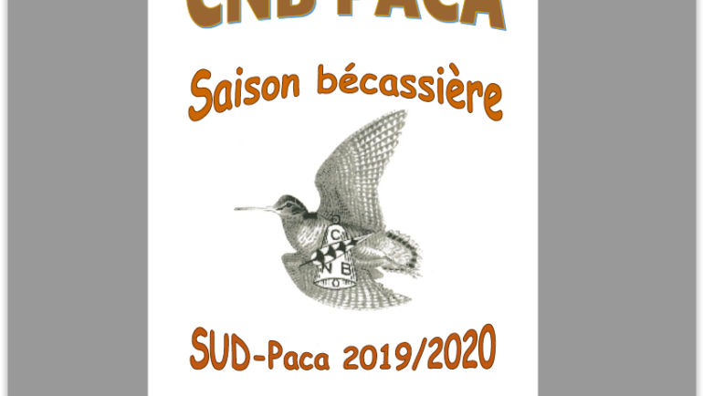Bilan SUD Paca 2019-2020 version 2019