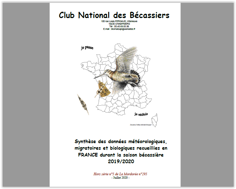 CNB synthèse nationale 2019-2020